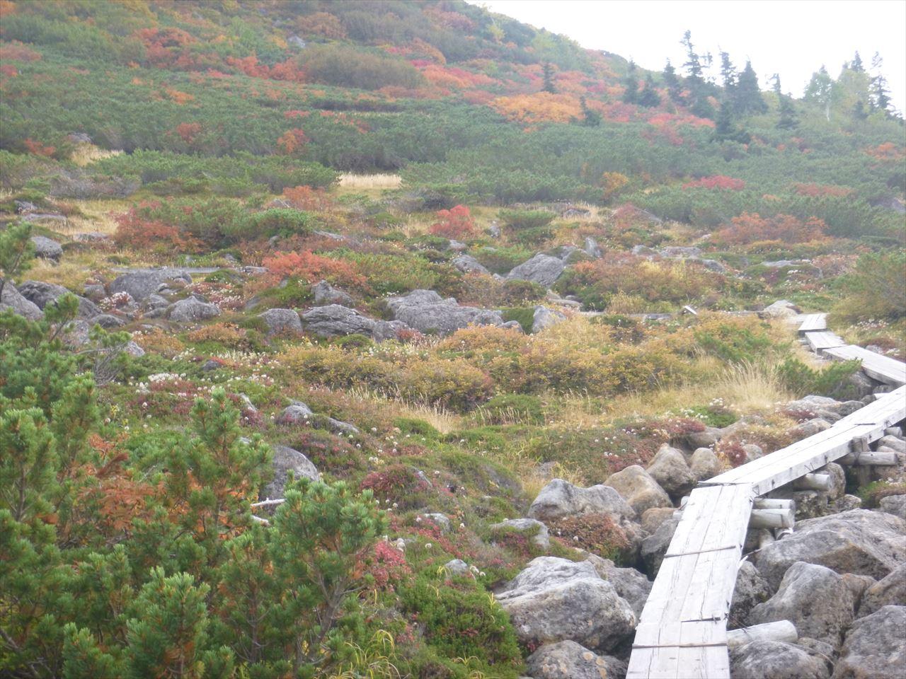 雲ノ平登山15
